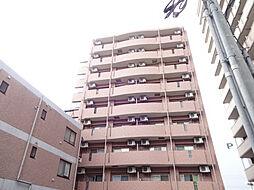 加治屋町MSH[7階]の外観