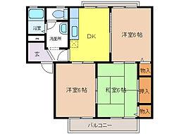 大阪府泉大津市下条町の賃貸アパートの間取り