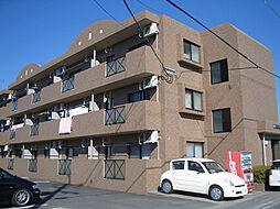 鹿児島県霧島市隼人町姫城3丁目の賃貸マンションの外観