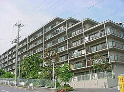 シティオ大津石山[5階]の外観