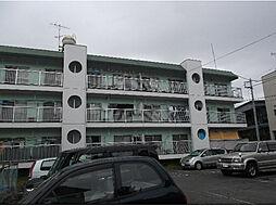 松竹ハイツ[3階]の外観