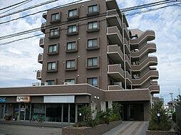 リファーレ新和[5階]の外観