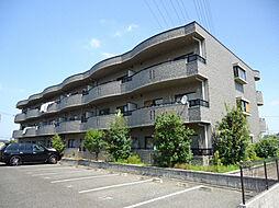 愛知県名古屋市緑区亀が洞3丁目の賃貸マンションの外観