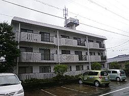 鹿児島県姶良市永池町の賃貸マンションの外観