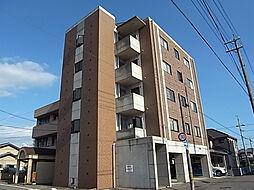 ハイツ秋桜[5階]の外観