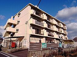 川村ビル[4階]の外観