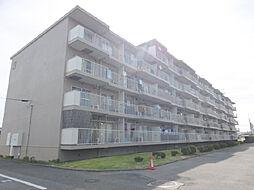 栃木県小山市乙女3丁目の賃貸マンションの外観