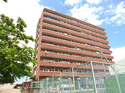 第17柴田マンション[5階]の外観