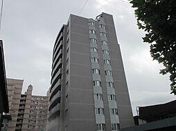 トーワグリーンヒル6条[10階]の外観