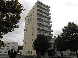 ウインザー8・8[10階]の外観