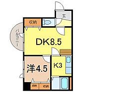 ダイメックス旭川4条ビル[5階]の間取り