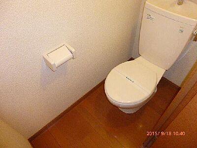 トイレ,1K,面積22.35m2,賃料3.2万円,JR東北本線 矢板駅 徒歩14分,,栃木県矢板市中2011-3