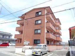 JR東海道本線 浜松駅 バス12分 西伊場町下車 徒歩5分の賃貸マンション